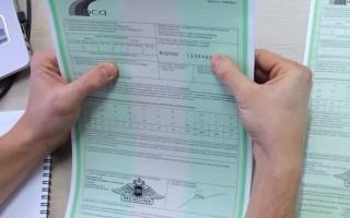 Сколько стоит оформление Зеленой карты на минимальный срок