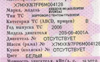 Как узнать штрафы ГИБДД по номеру автомобиля